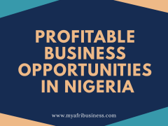 Wholesale Business Opportunities